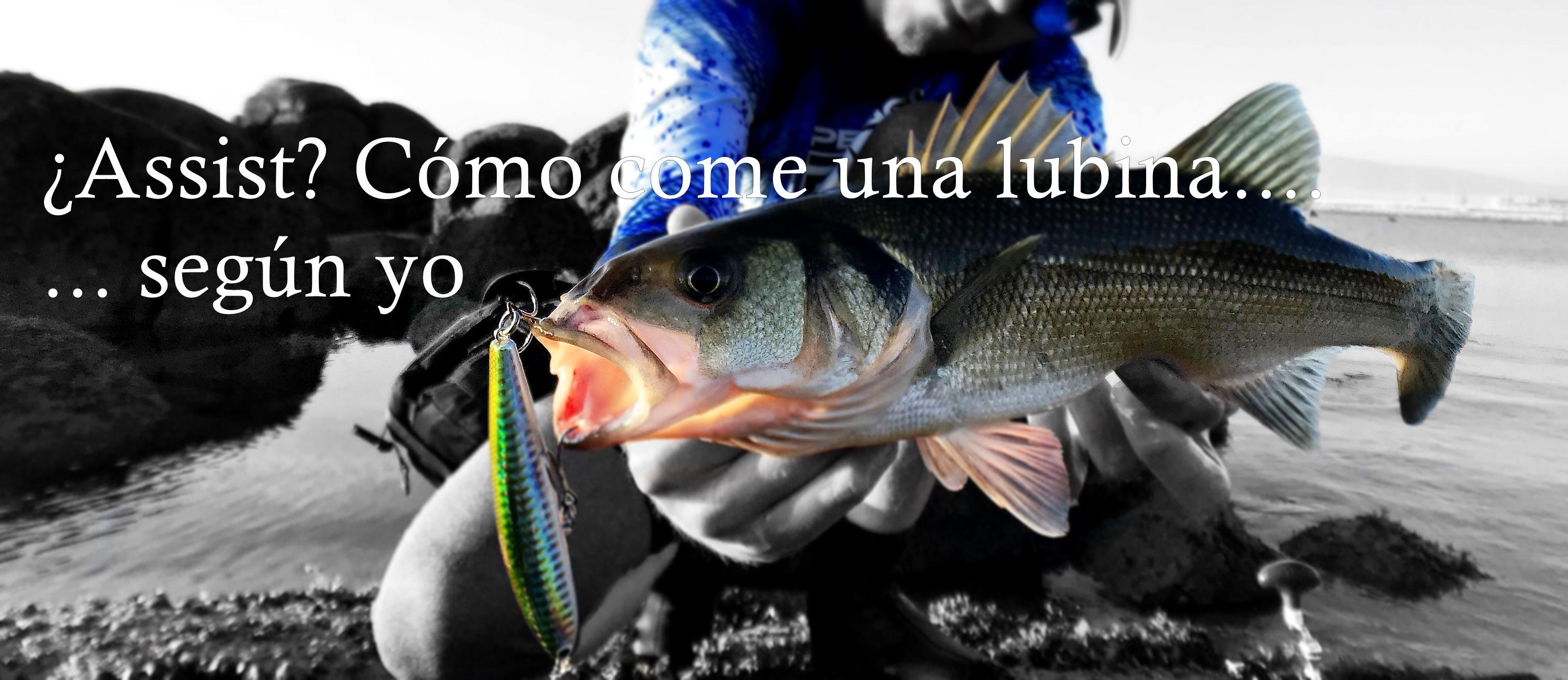 LIMMC Cebo Suave para Vinilo de Pesca de lubina de Trucha salm/ón a 5.5 Pulgadas 14 cm Trajes de ba/ño 4 pcs//Lot Se/ñuelos de Pesca Cebo