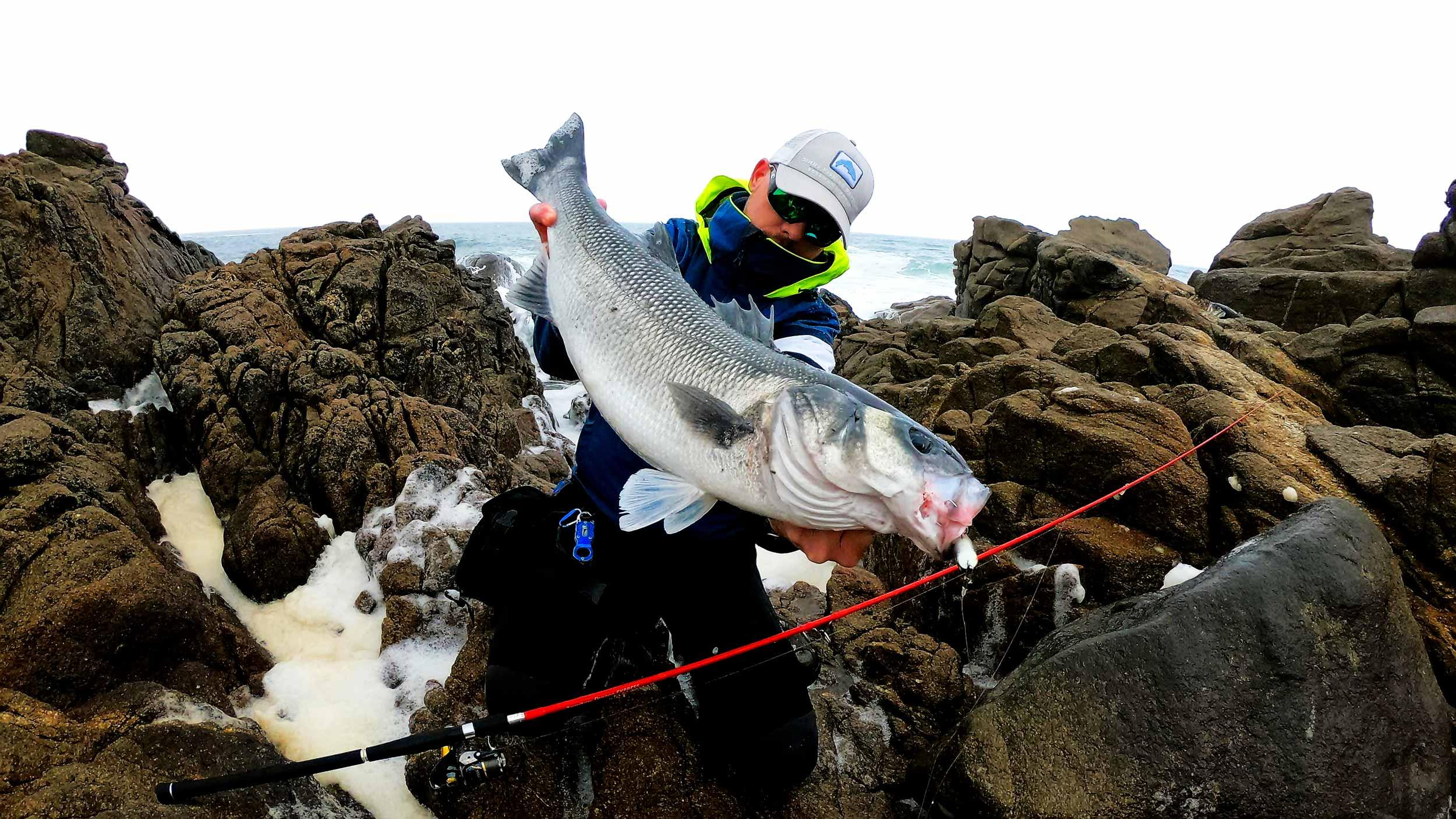KRID-Lifetimefishing-Home