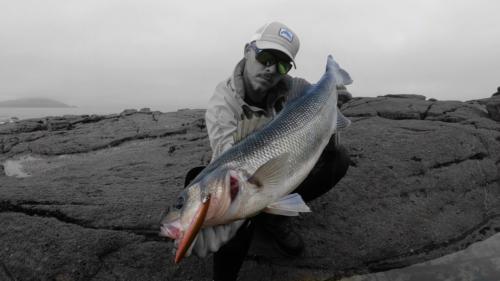 Galerías KRID LifetimeFishing Saltwater Spinning