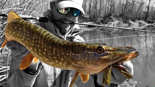 Galerías KRID LifetimeFishing Freshwater Spinning
