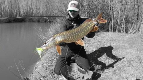 Galerías KRID LifetimeFishing Freshwater Fly Fishing